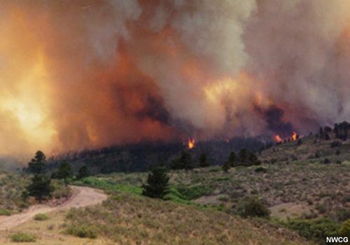 S-290 Unit 11: Extreme Wildland Fire Behavior